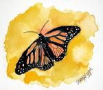 Derek Mccrea - Orange monarch butterfly painting print