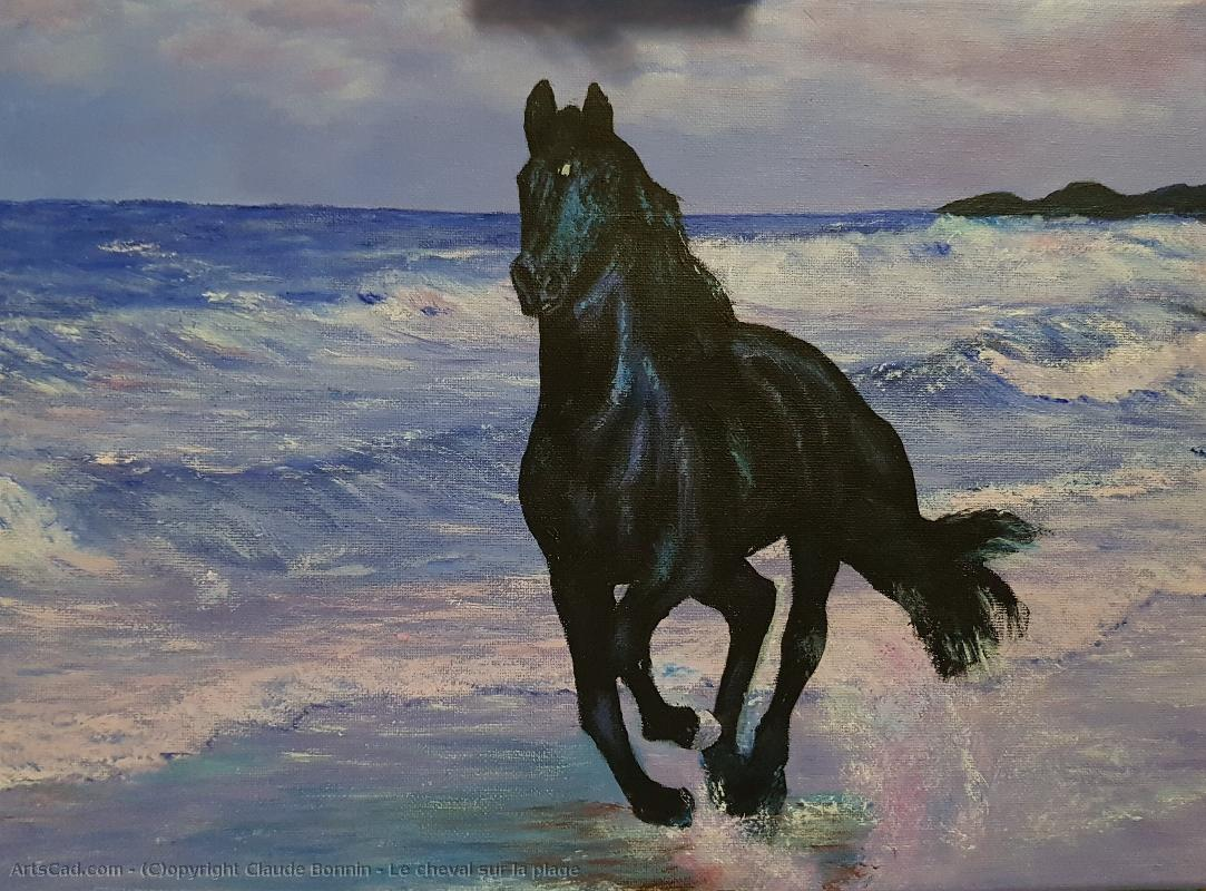 Artwork >> Claude Bonnin >> the horse out of  there  beach
