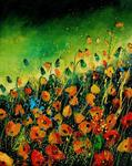 Pol Ledent - orange poppies