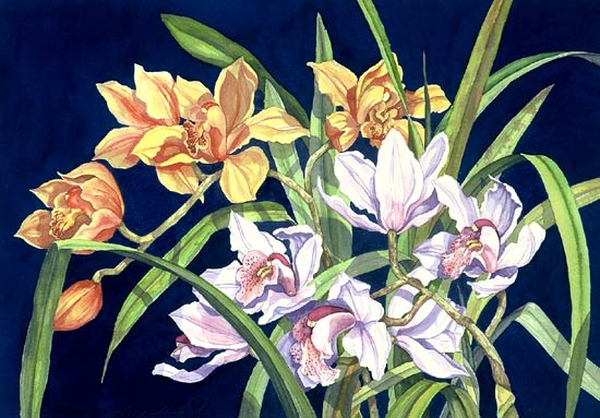 Artwork >> Lucy Arnold >> Orchids in Blue