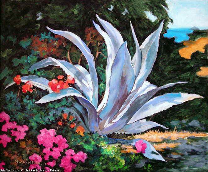 Artwork >> Antoine Molinero - Peintre >> Aloe orient bay