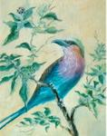 Rita Palm - Lilac Breasted Roller