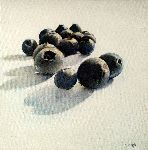 Tomas Castaño - blueberries