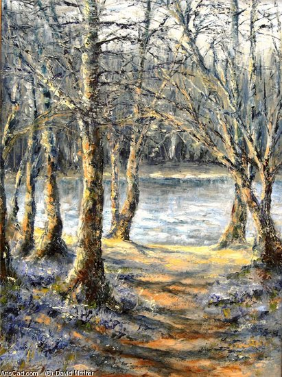 Artwork >> David Mather >> Bluebells at Burrator