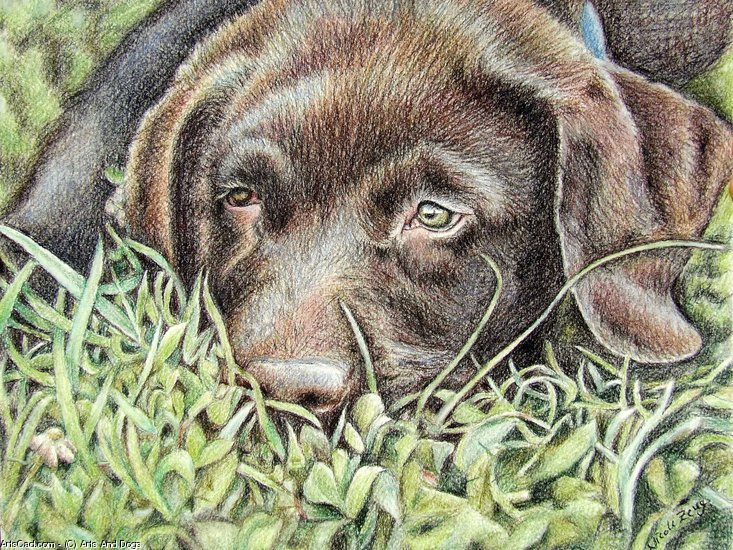 Artwork >> Arts And Dogs >> Labrador Puppy