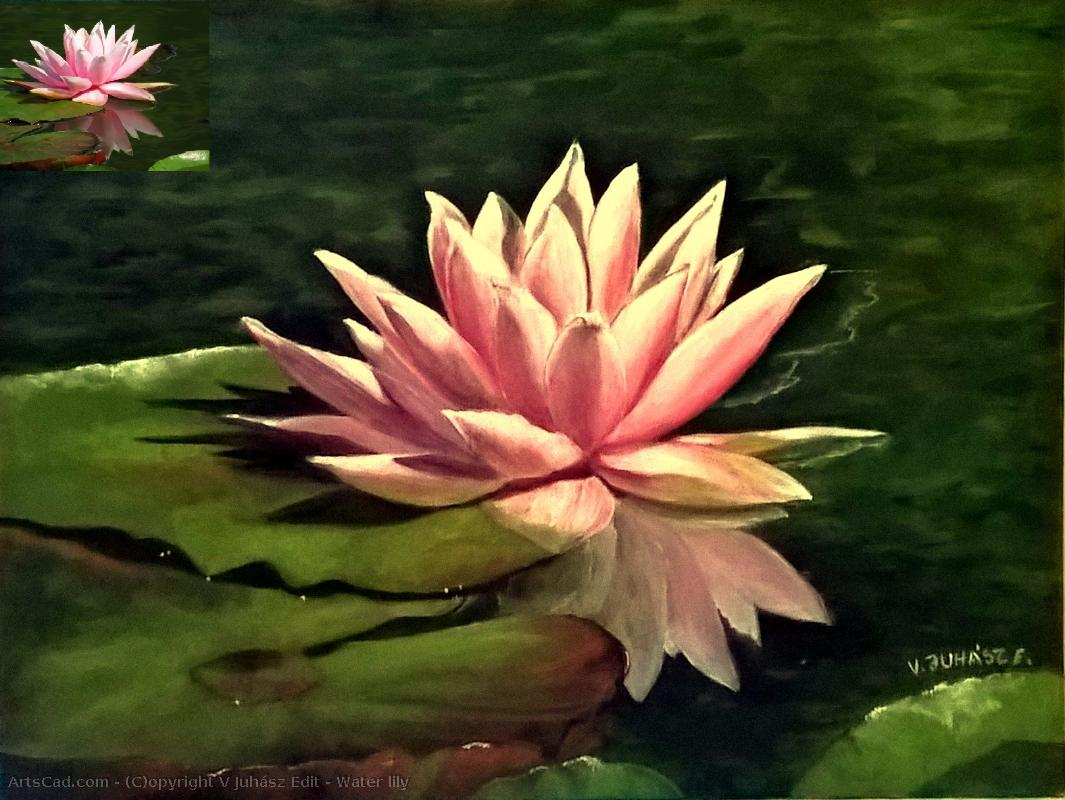 Artwork >> V Juhász Edit >> Water lily
