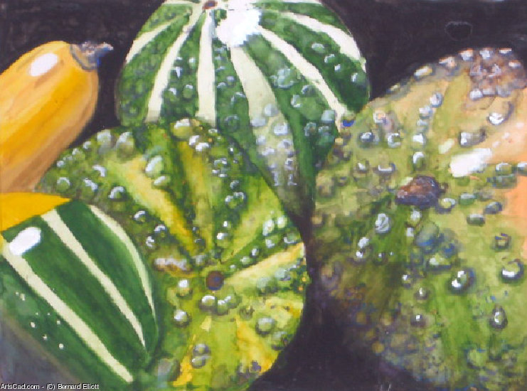 Artwork >> Bernard Elliott >> Gourds