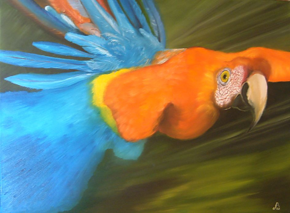Artwork >> Andree Burniaux >> parrot