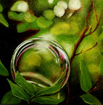 Marie-Claire Houmeau - Bubble and foliage