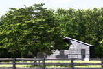 Ginger Barritt - Gray Barn and Fence