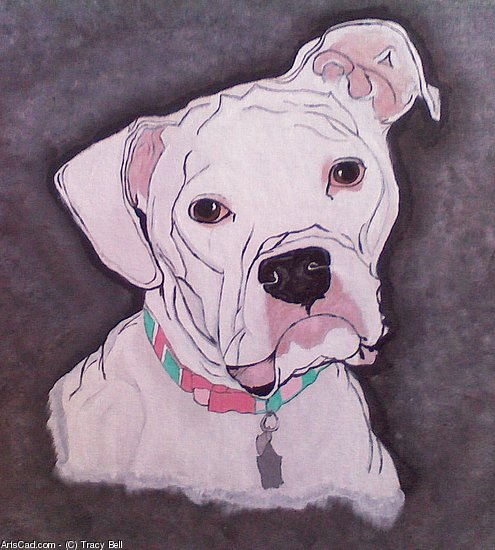 Artwork >> Tracy Bell >> Maissie, A White Boxer