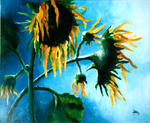Allion Claire Marie - Sunflowers