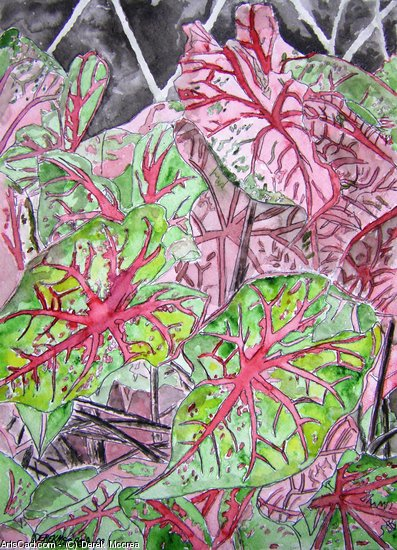 Artwork >> Derek Mccrea >> Caladiums tropical plant watercolor painting print