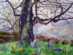 Ghislaine Giustiniani - in the country from Crocuses