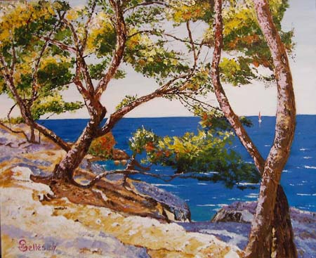 Artwork >> Jean-Claude Selles Brotons >> The coast blue in mediterranean - Pine and rocks at le Carro