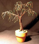 Sal Villano Wire Tree Sculpture - UMBRELLA BONSAI - Mini Wire Tree Sculpture