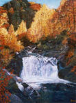 Jean-Claude Selles Brotons - cascading up in  fall
