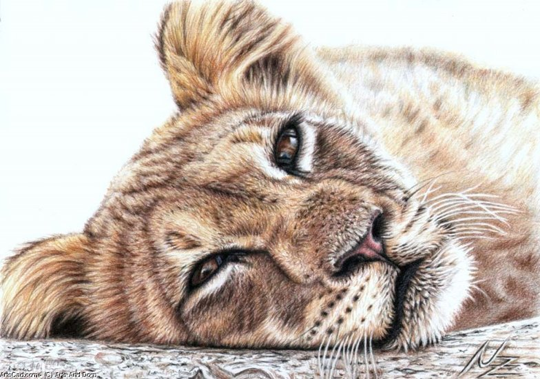 Artwork >> Arts And Dogs >> Tired Young Lion