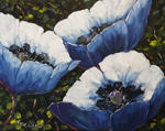 Richard T Pranke - Blue Poppies_sold