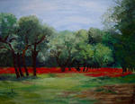 Gilles Jeanine - Field of Poppies
