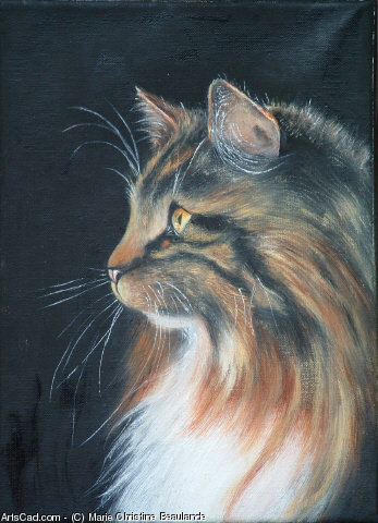 Artwork >> Marie Christine Beaulande >> profile from cat
