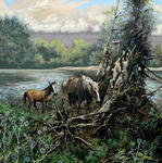 Ramil Latypov - Mare and foal