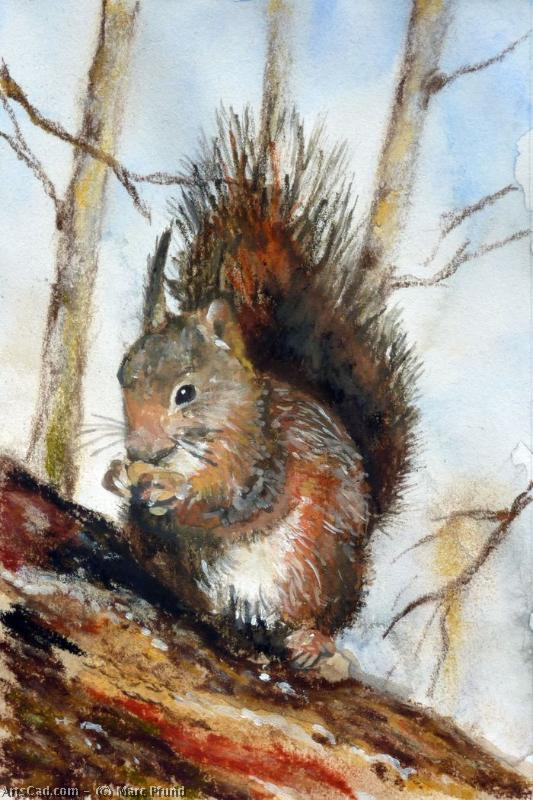 Artwork >> Marc Pfund >> squirrel
