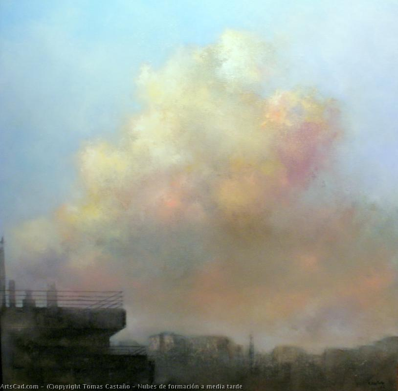 Artwork >> Tomas Castaño >> clouds out of  formation  to  stocking  late