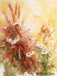 Chantal Jodin - daisies wild