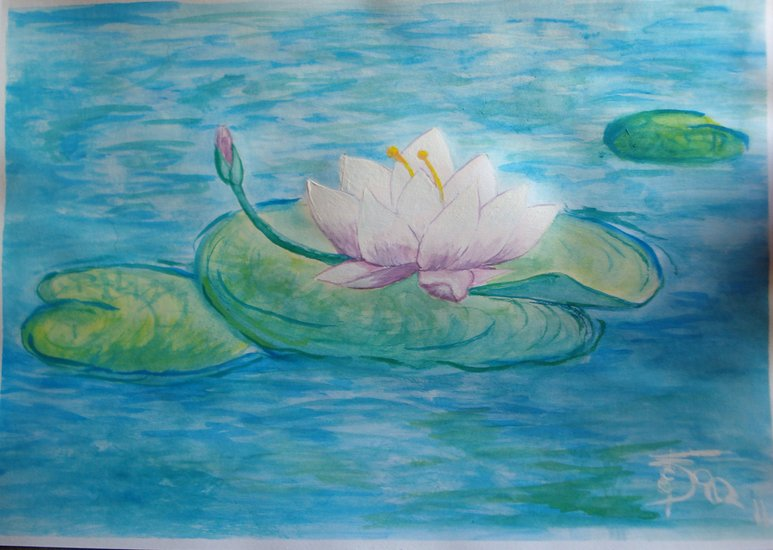 Artwork >> Shams Martini Fedrart >> Water Lilly