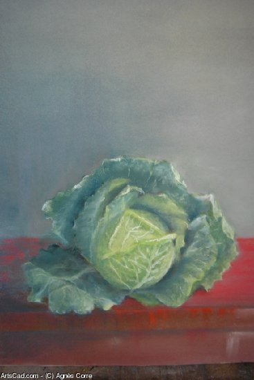 Artwork >> Agnès Corre >> cabbage from  kite