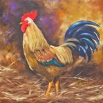 Nathalie Armand - The rooster Licot