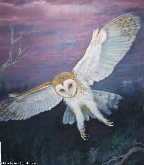 Artwork >> Rita Palm >> Barn Owl