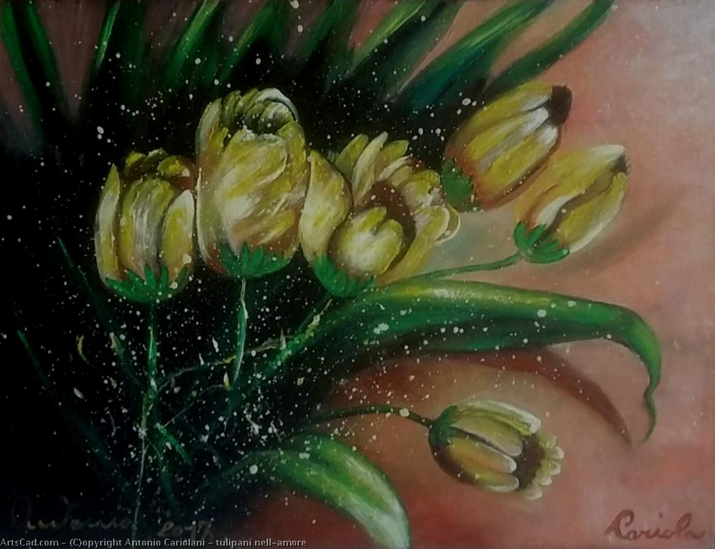 Artwork >> Antonio Cariolani >> tulips IN LOVE