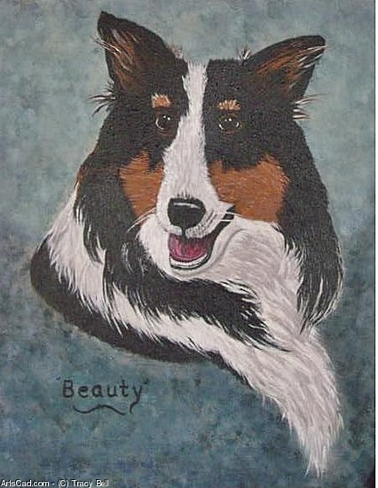 Artwork >> Tracy Bell >> Beauty, A Tri-Colored Sheltie