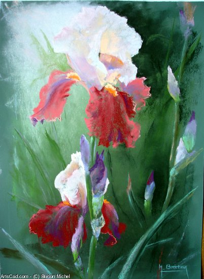 Artwork >> Breton Michel >> Iris Rosy