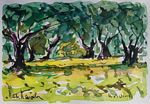 Heritier-Marrida - olive trees up in  Corsica