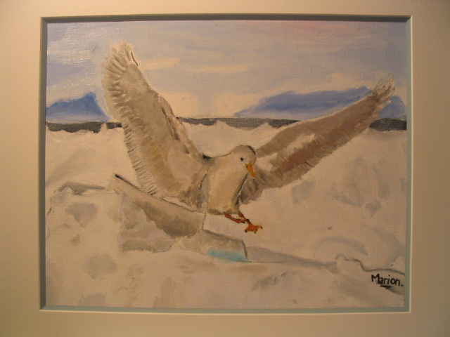 Artwork >> Marion Mollard >> And bam seagull