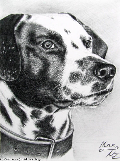 Artwork >> Arts And Dogs >> Dalmatian Max
