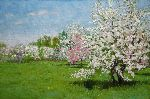 Alexander Bezrodnykh - Spring is An Apple Orchard