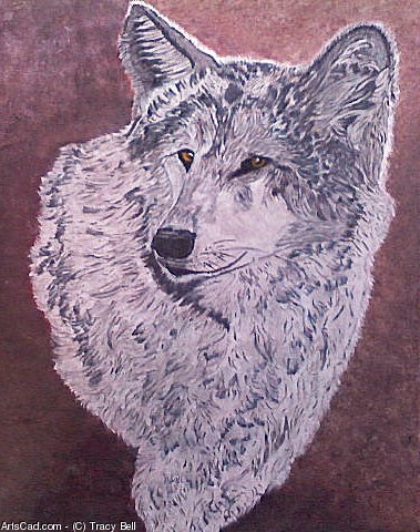 Artwork >> Tracy Bell >> White Wolf 1