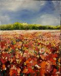 Scott Rorive - fields of flowers