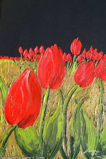 Artwork >> James E. Dunbar >> Red Black Sky Tulips