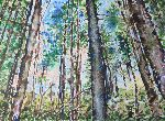 Victor Ovsyannikov - Morning in a pine forest . 1