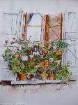Alain Berthelot - Flowers balcony at Rescued ( Gard )