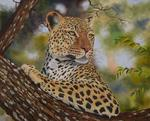 Val Odendaal - Leopard torso