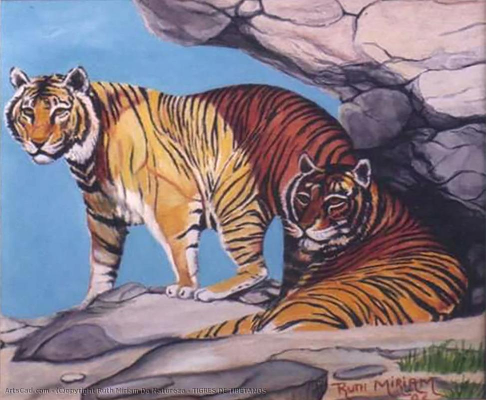 Artwork >> Ruth Miriam Da Natureza >> TIGERS OF TIBETANS