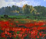 Vicente Gimeno Ripoll - poppies it is montserrat
