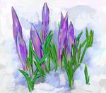 Iris Piraino - flowers in the snow