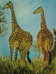 Teta Bendavid - The giraffes